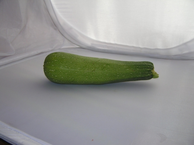 Can Dogs Eat Zucchini Raw