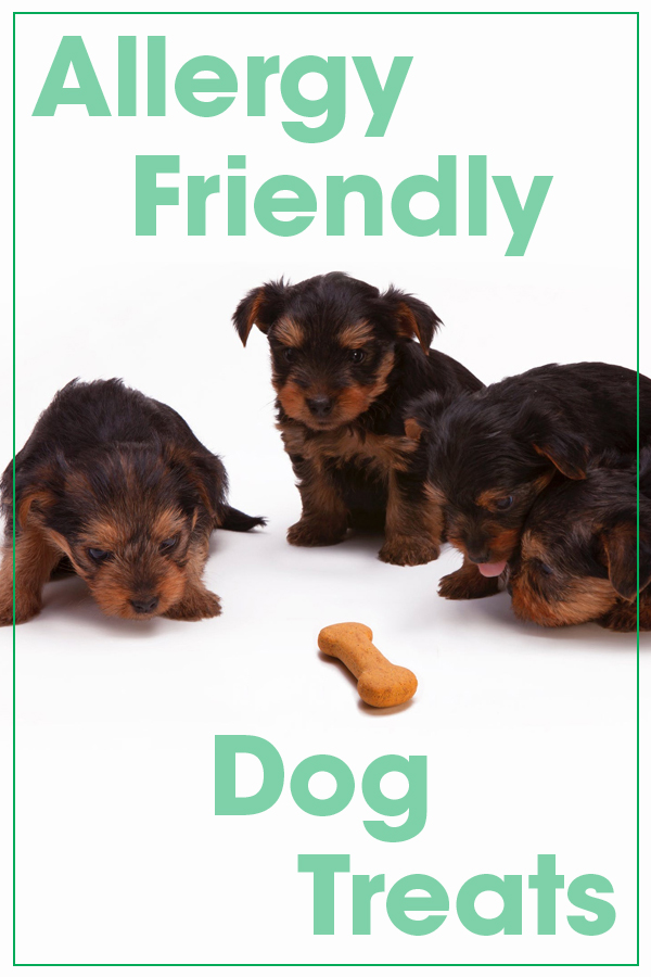 ALLERGY FRIENDLY DOG TREATS
