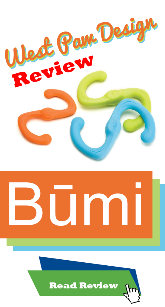 West Paw BUMI toy review
