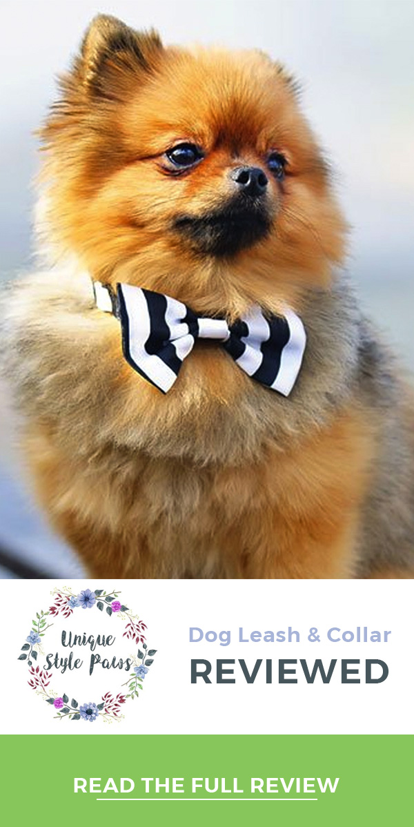 Unique Style Paws leashed & Collars